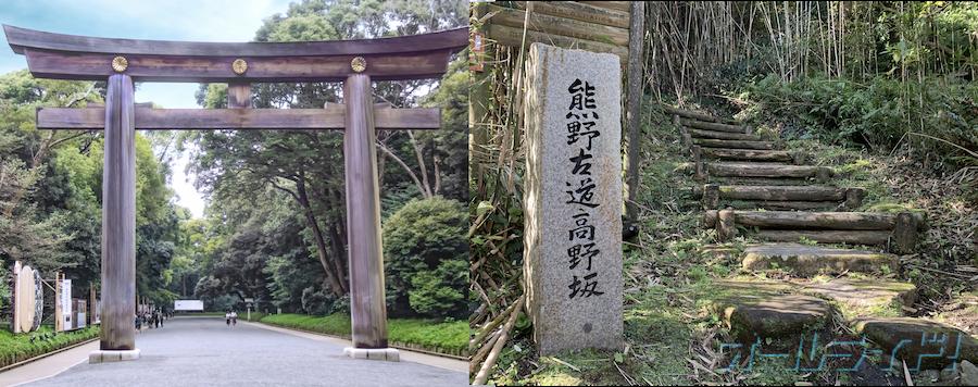 東京から和歌山