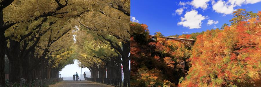 東京から大崎
