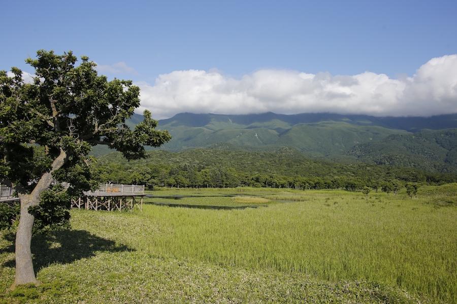 知床五湖と山々