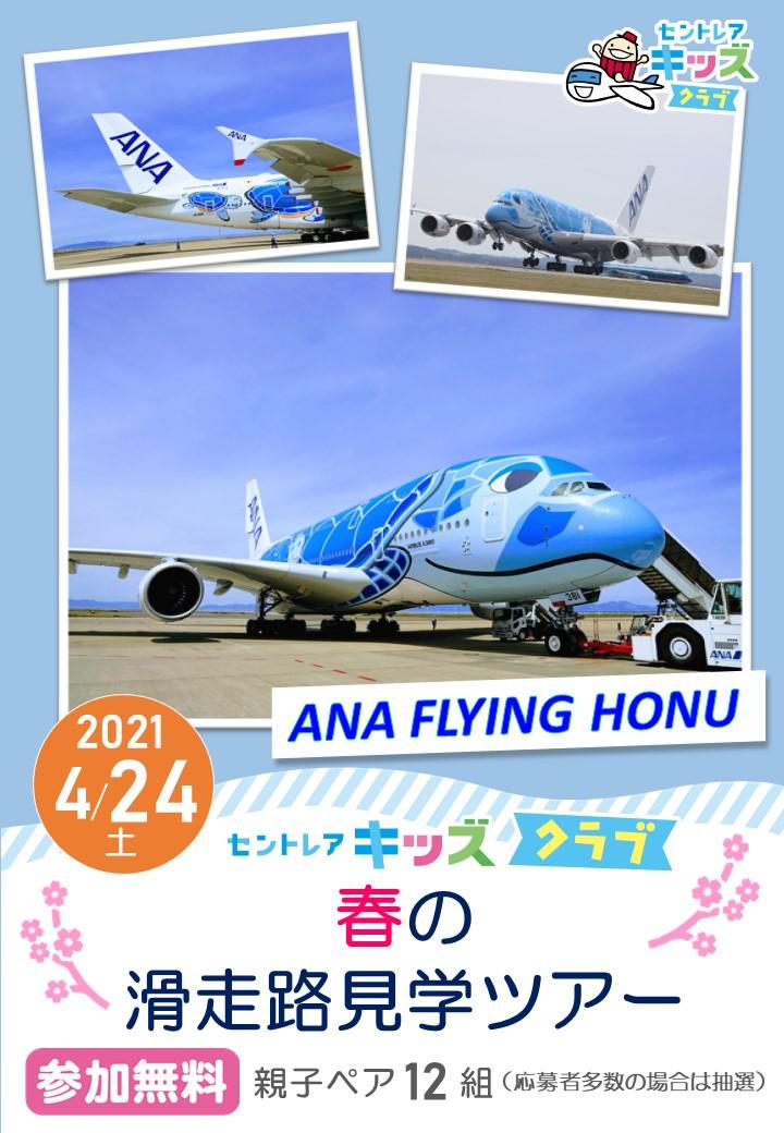 ANA FLYING HONU
